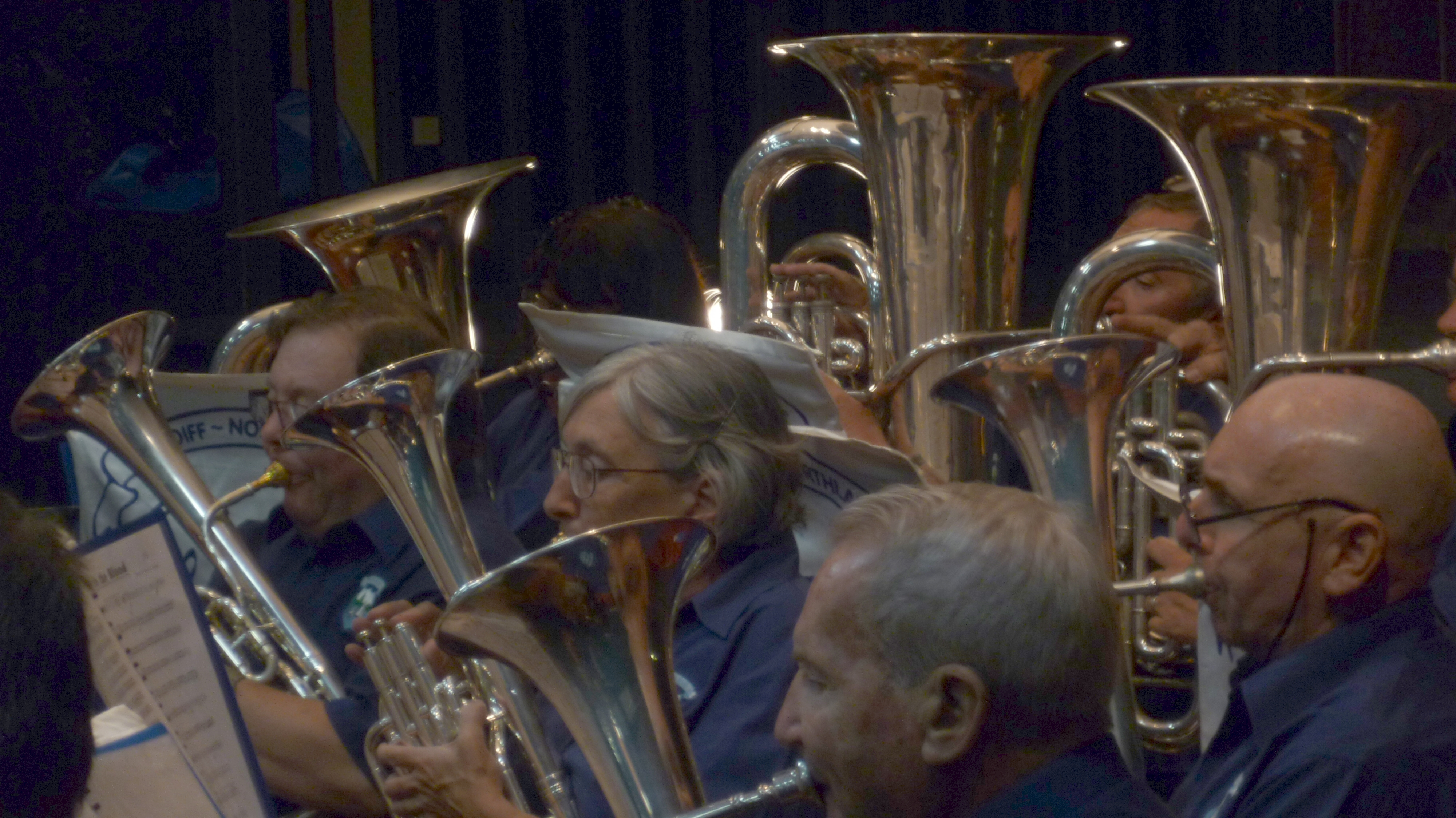"Musicians ""in close up"" at the Valentine's in March Concert 2016"